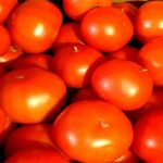 Patterson Greenhouses tomatoes