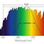 PAR and Lumens Spectrum Graph