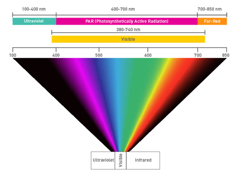 The electromagnetic spectrum showing UV, PAR, Far-red, and visible wavebands