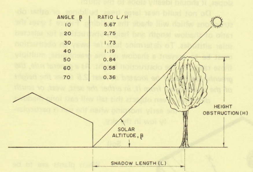 graph-showing-tree-by-greenhouse
