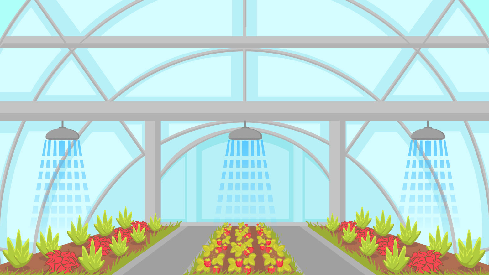 greenhouse-grow-light-height